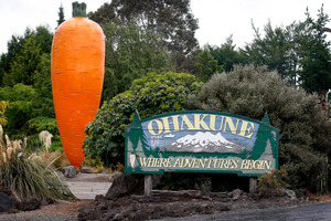 Ohakune produces a high proportion of NZ's carrots and also promises visitors lots of excitement. Picture / Christine Cornege.