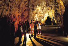 Tower has increased its stake in Tourism Holdings, which operates the Waitomo Glowworm Caves. Photo / APN