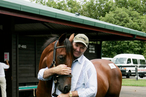 Hall of Fame trainer David Hayes. Photo / Wayne Drought