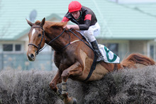 Shaun Phelan makes the most of his pickup ride on Tom's Myth in the Wellington Steeplechase on Saturday. Photo / SNPA