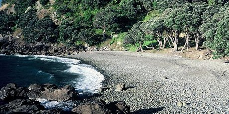 The sheltered beach at Fantail Bay forms an inviting curve. Photo / Supplied