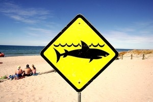A surfer was attacked by a shark at Redhead Beach, making this the third attack this month. Photo / supplied.