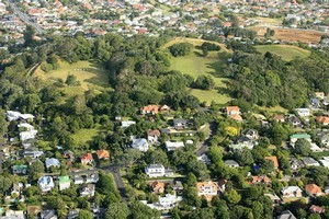 Mt Albert would be a good test of the political risks of urban intensification, the survey suggests. Photo / Martin Sykes