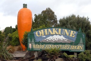 Visitors remember Ohakune for the giant carrot and the historic Number Two bridge, which is being restored 96 years after it was built. Photo / NZPA