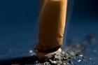Almost half of kohanga reo teachers smoke. Photo / NZ Herald