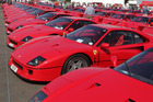 The largest collection of Ferrari F40s ever assembled in one place. Photo / Supplied