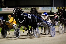 Mark Purdon drives I Can Doosit (10) to victory in the Canam Rowe Cup in May.Picture / Dean Purcell.