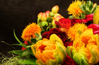 A beautiful bouquet of carefully arranged flowers can bring great joy to those who set their sights on them. Photo / Thinkstock