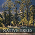 New Zealand's Native Trees book cover by John Dawson and Rob Lucas. 