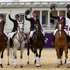 The New Zealand Olympic Games eventing team, from left, Jonelle Ricards, Caroline Powell, Jonathan Paget, Andrew Nicholson and Mark Todd after winning the bronze medal. Photo / Brett Phibbs.