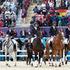 The New Zealand Olympic Games eventing team, from left, Jonelle Ricards, on Flintsater, Caroline Powell, Lenamore, Jonathan Paget, Clifton Promise, Andrew Nicholson, Nereo. Photo / Brett Phibbs.