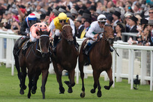 Was this her swansong? Black Caviar (left) makes it 22 wins from 22 starts in the Diamond Jubilee Stakes at Ascot in June. Photo / AP 