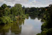 Mighty River's principal assets are hydro electric generators on the Waikato River -  but in 1840 the river provided eels and transport for Maori villagers. Photo / Christine Cornege