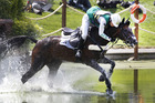 Australia's Sam Griffiths struggles to stay on her horse Happy Times at water jumps during the individual eventing cross country. Photo / Mark Mitchell