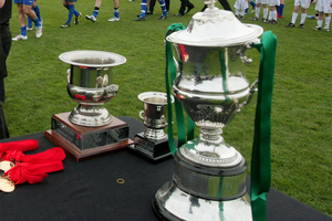 Newtown Park will host the Chatham Cup final.