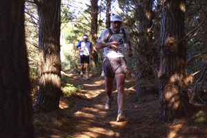Xterra runners negotiate the shady track through the Whitford forest.