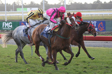 Art Beat beats Innovation (not in picture), Khemosabi (grey) and I Am Sam (rails), who finished fourth, in the Winter Cup at Riccarton on Saturday. Photo / Race Images