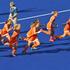 Netherlands celebrate their win against the New Zealand Black Sticks. Photo / Brett Phibbs