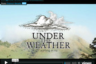 Surf film project 'Under the Weather' which has so far raised over $7000 in funding towards its $14000 goal on crowd funding site Social Backing. Photo / Supplied