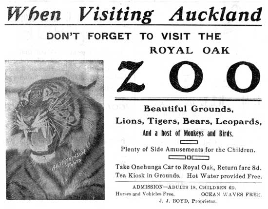 The Royal Oak Zoo was the forerunner to Auckland Zoo. It opened in 1911.
