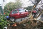 Margaret Hooper's car landed in the garden of a property across the road from her home after she apparently hit the accelerator instead of the brake.