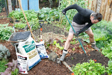 Tidying, pruning, feeding and mulching now will get your growing season off to a good s