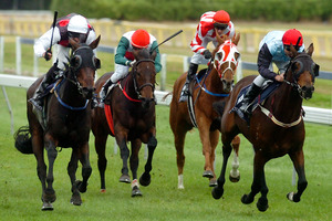 Indikator (far left) will be super competitive in race 3, even more so if the rain arrives early. Photo / Kelvin Teixeira