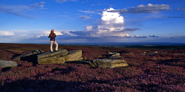 A walker enjoys the Yorkshire moors. Photo / Visit Britain