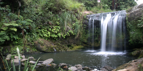 Oakley Creek's small waterfall is a pleasant sight in Waterview, Auckland. Photo / Greg Bowker