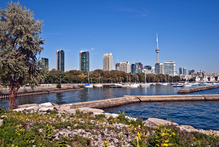 Taking a wander along Toronto's waterfront is a great way to introduce yourself to Canada's largest city. Photo / Thinkstock