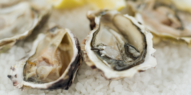 Oysters can elude people who attempt to evict them from their homes. Photo / Supplied