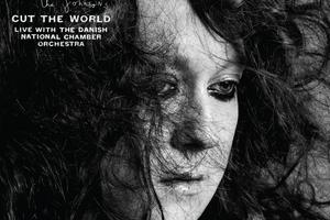 Antony and the Johnsons, Cut The World.