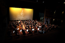 The Auckland Philharmonia Orchestra plays free and low-cost concerts throughout Auckland.  Photo / Sarah Ivey
