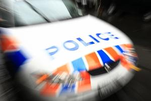 A driver has died after their car collided with a truck. Photo / File