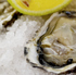 Oysters. Photo / Thinkstock