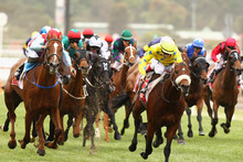 Dunaden (yellow colours) has 58kg in the Caulfield Cup. Photo / Getty Images 
