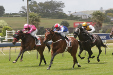 Xanadu, No 6, was paying $9 yesterday as an outside chance in the Makfi Challenge Stakes.