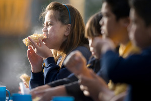 The panel said a food in schools programme was a good interim measure. Photo / Richard Robinson
