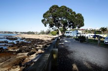 Takapuna Beach camp ground. Photo / APN