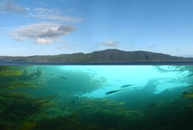 Planners will be able to crunch a wide range of data when mapping potential areas for aquaculture sites or marine reserves. Photo / Kapiti News