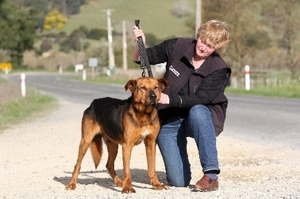 SPCA inspector Lesley Gibson, at the site where the dog died, demonstrating how short the lead should be on animals travelling on the back of vehicles. Photo / File