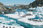 Scientists believe organic matter from Antarctica's rich biological history may have been converted to methane. Photo / Thinkstock