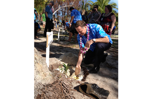 John Key was the first leader to get his mahogany sapling in the ground and appeared happy with his efforts, saying he expected his tree to grow tall and strong. Photo / Claire Trevett