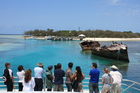 Visitors to Heron Island arrive to a welcome of 100,000 black noddy terns. Photo / Paul Rush