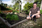 Justin Newcombe advocates creating structure in the garden, hence, sleepers to keep the veges in line. Photo / Natalie Slade