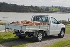 VW puts some space between its rivals as it tackles the 'working' ute market. Photo / Phil Hanson