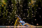 Qi Huan as the Prince and Lucy Green as Cinderella in the Royal New Zealand Ballet's performance. Photo / Supplied