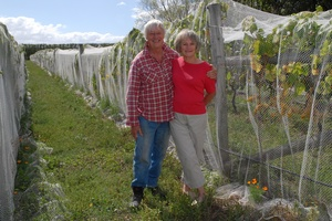 The Cabbage Tree Vineyard owners David and Winifred Bull. Photo / APN