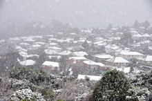 The snowy Dunedin suburb of Brockville yesterday. The snow that hit the city has moved up the country, closing many roads along the way. Photo / AP