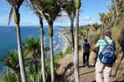 The Te Araroa and DoC cliff top walks along to Mangawhai Heads. Photo / Supplied